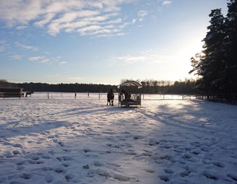WinterblickHengstkoppel-1