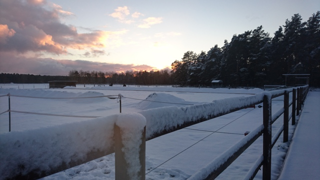 winterlicheabendstimmung