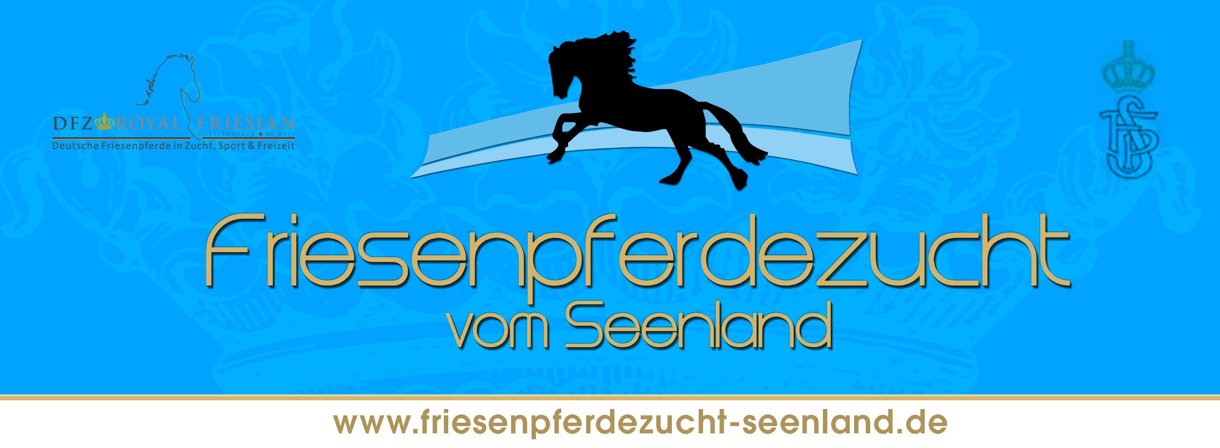 Friesenpferdezucht vom Seenland